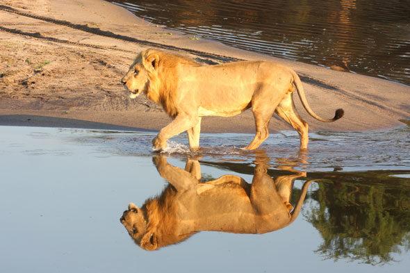 Zambija, deset slika