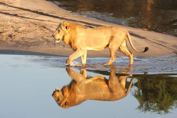Zambia, en diez imágenes
