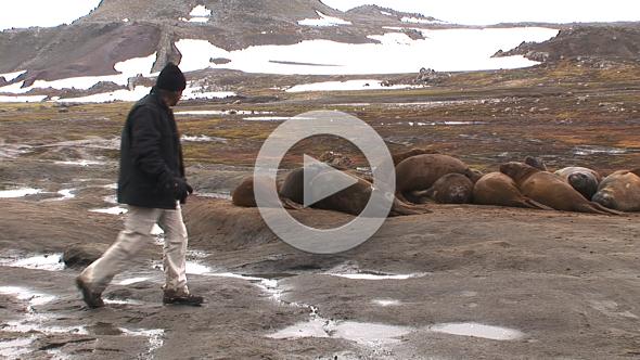 Villa de las Estrellas: un sueño en la Antártida