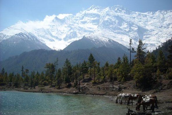 Las montañas blancas, el país sagrado, un adiós