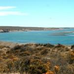Costa de la Península de Valdés