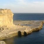 Lobería en la costa de la Península de Valdés