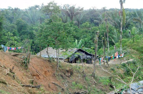El Chocó: la maldición de la lluvia amarilla