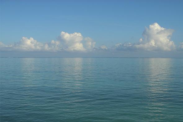 De milagros, gaviotas y corales samoanos