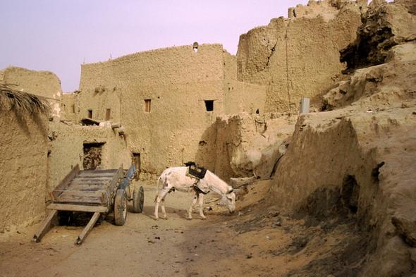 Siwa: la soledad de Alejandro Magno