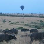 Globo para turistas en el Masai Mara Kenia