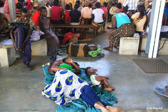 Un immoral suborn per curar la malària