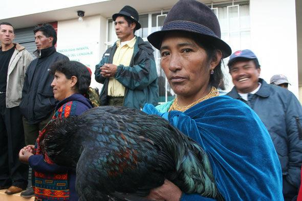 Ecuador: maternidade que a metade do mundo