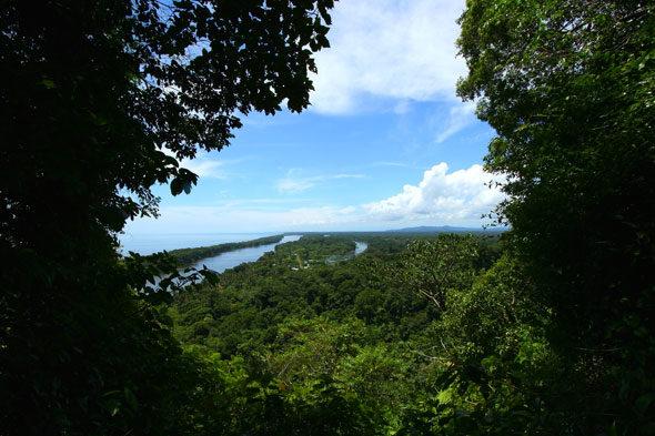 Tortuguero, Costa Rica: espectros da noite