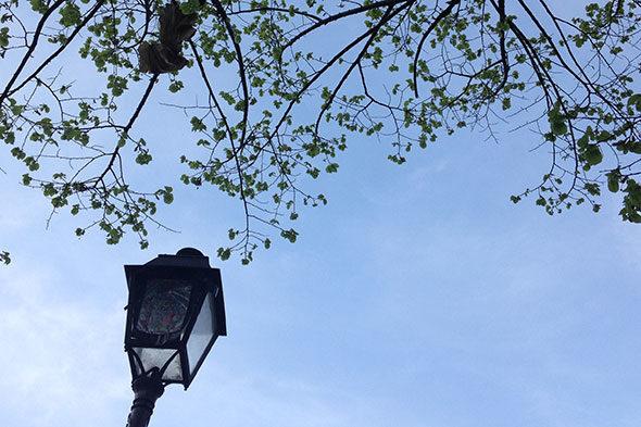 Pariz, a primera luz