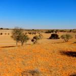 Kalahari, Sudáfrica