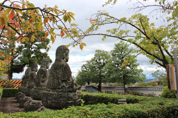 De Hokkaido a Kyoto: la felicidad horizontal