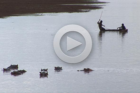 Pescando entre hipopótamos