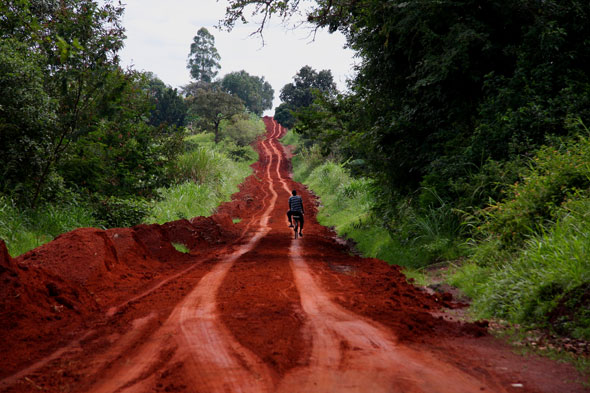 """Uganda: el encuentro con el Nilo """"verde"""""""