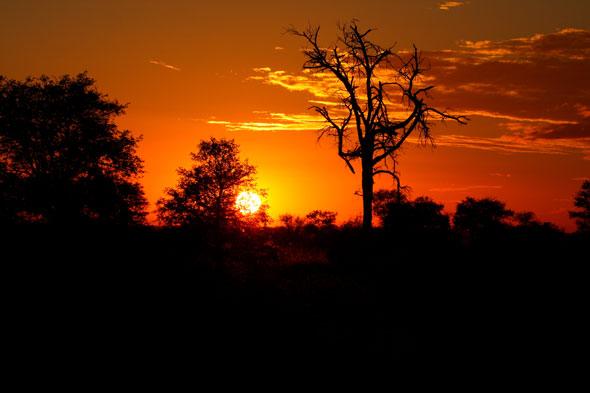 Kruger: la noche que se despedazó el cielo