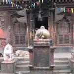 Patan (3)
