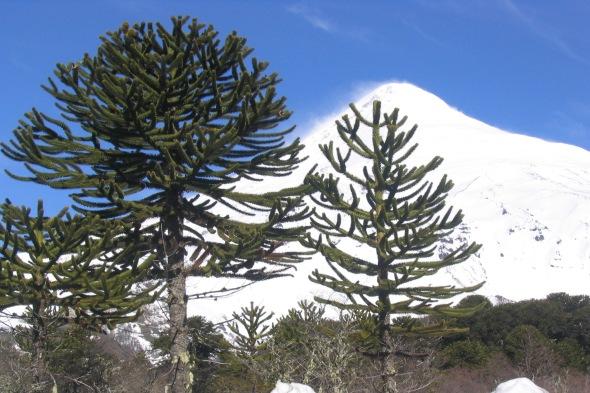 El temible volcán nevado de la Patagonia