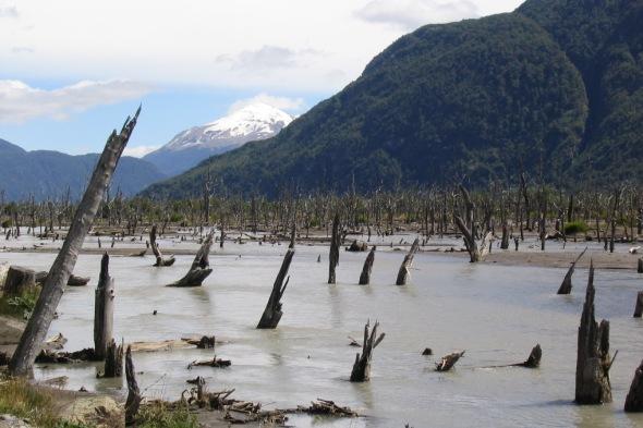 Capilla de mármol y el robo del río Fénix