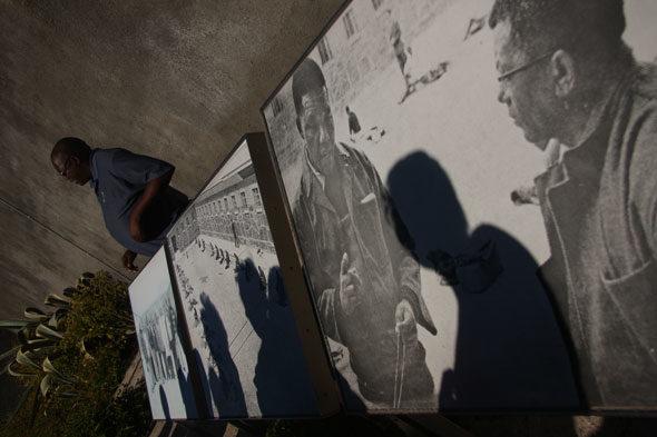 Rolihlahla Mandela: Ziehen am Ast eines Baumes