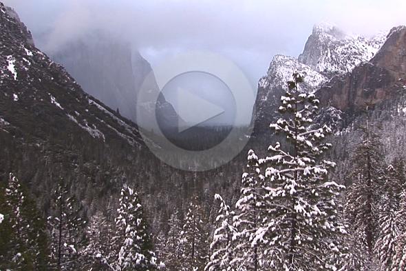 Yosemite, a gran obra de Félix Rodríguez de la Fuente americano