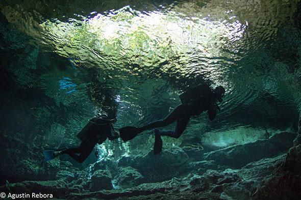 Cenotes mexicanos: bucear al inframundo