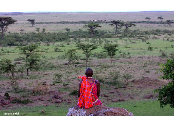 Campamento de Kandili: paseo gratuíto pola Masai Mara