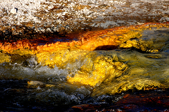 Texturas y colores de Yellowstone