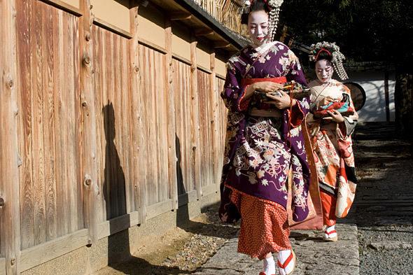 日本と美しさの傷