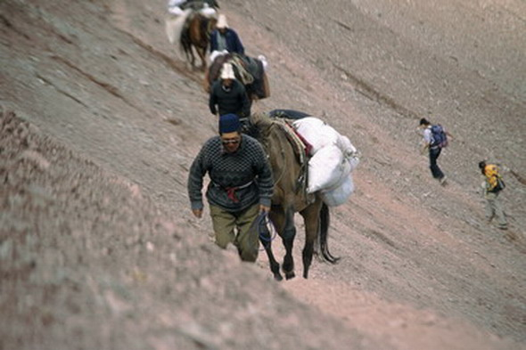 Kirgizstan: la persecución del lobo de las montañas