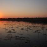 3.) Delta del Okavango. Botsuana
