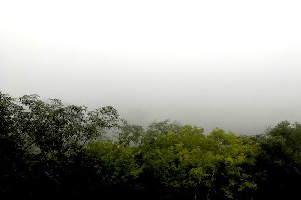 Un amanecer sobre la gran pirámide de Tikal