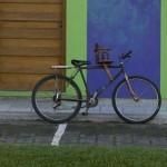 tlacotalpan bici
