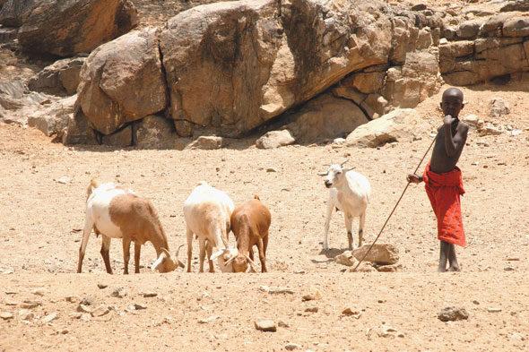 Lake Turkana: prema Jade mora